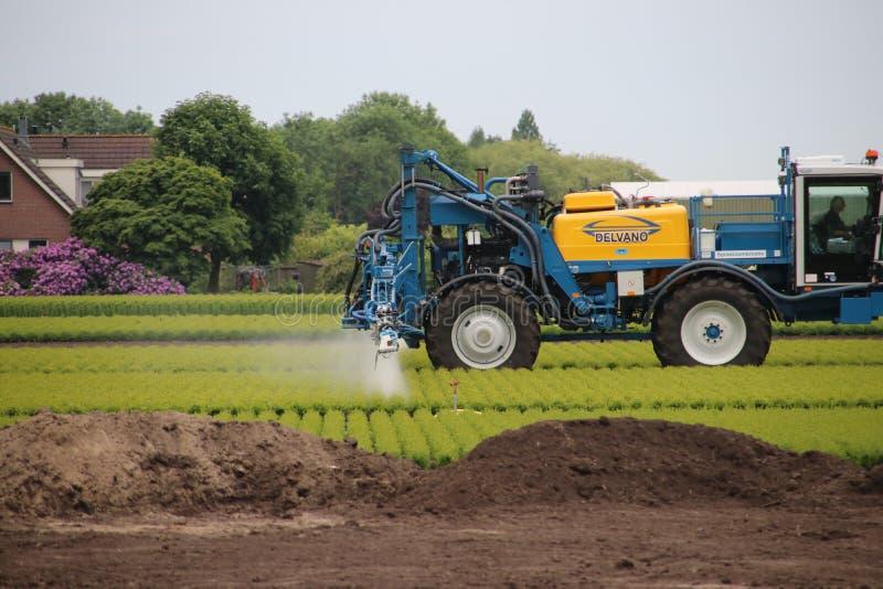 El granjero está rociando los pesticidas y otros añadidos crecientes sobre la tierra en Zoeterwoude en de Países Bajos fotografía de archivo libre de regalías