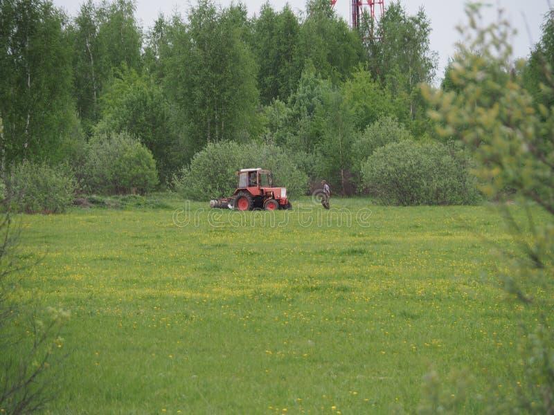 El granjero mayor en el campo examina el tractor imagen de archivo