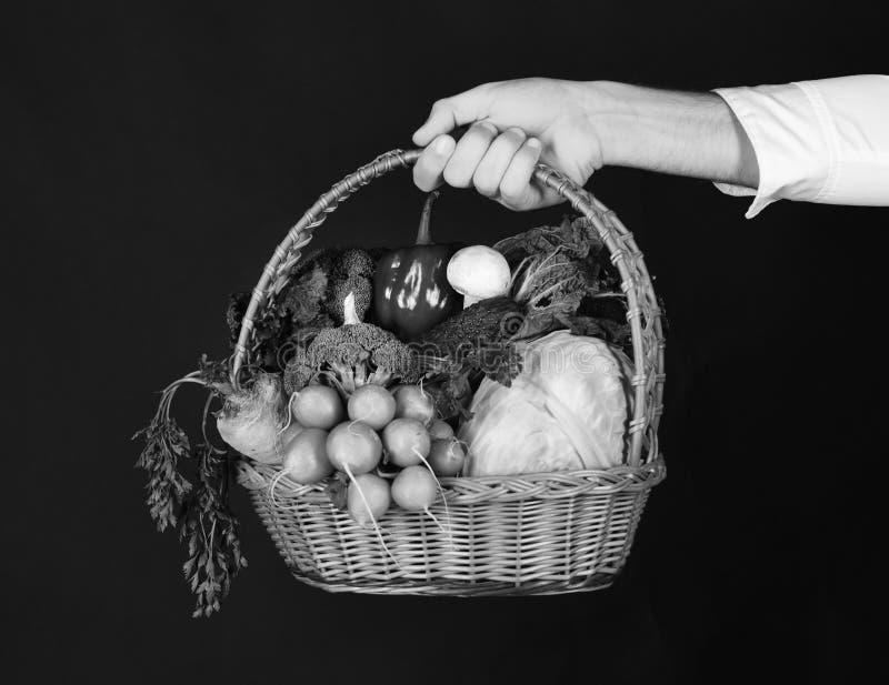 El granjero sostiene la col, el rábano, la pimienta, el bróculi, la zanahoria, la seta y la lechuga fotografía de archivo libre de regalías