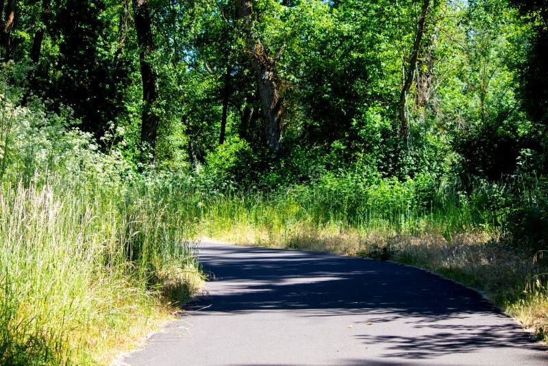 El greenway imagen de archivo