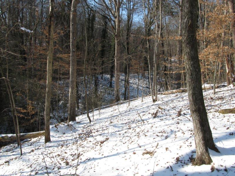 El Greenway en Winter3 imagen de archivo libre de regalías