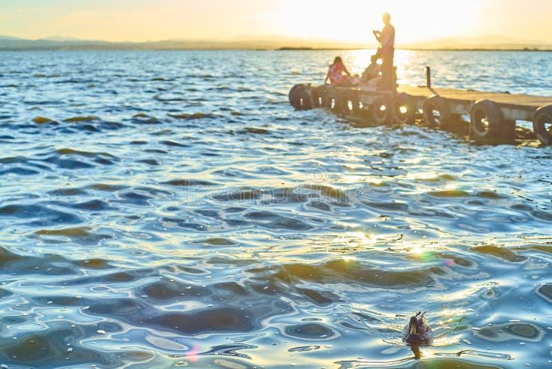 El grupo de amigos comtempla la puesta del sol que se sienta en el embarcadero del Albufera de Valencia foto de archivo libre de regalías