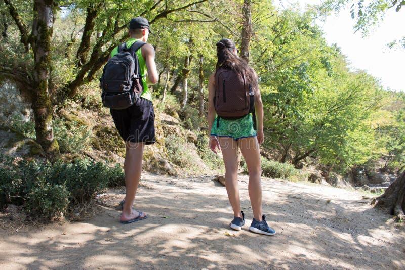 El grupo de caminantes con la mochila está teniendo un viaje que camina a través del bosque en un día soleado Los amigos están ex foto de archivo