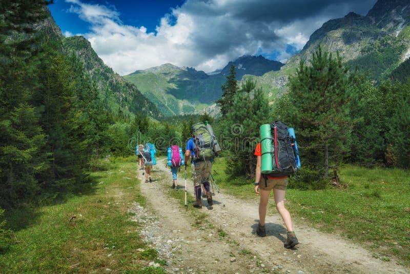 El grupo de caminantes sube hasta las altas montañas fotografía de archivo libre de regalías