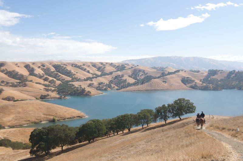 El grupo de jinetes de lomo de caballo monta abajo de rastro en el lago imagen de archivo libre de regalías