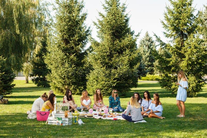 El grupo de la mujer joven se sienta en la manta de la comida campestre en parque verde del verano Fines de semana del verano fotografía de archivo libre de regalías