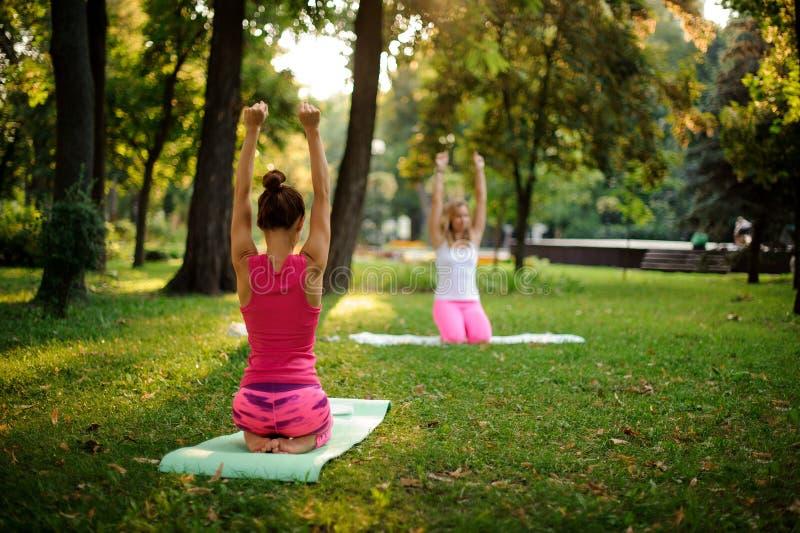 El grupo de mujeres que hacen yoga ejercita en hierba verde en el parque imagenes de archivo