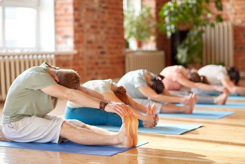 El grupo de personas que hace yoga adelante dobla en el estudio imágenes de archivo libres de regalías