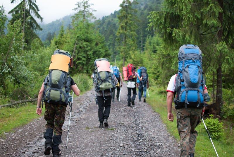 El grupo de turistas fue al bosque de la montaña para el advnture extremo fotografía de archivo libre de regalías