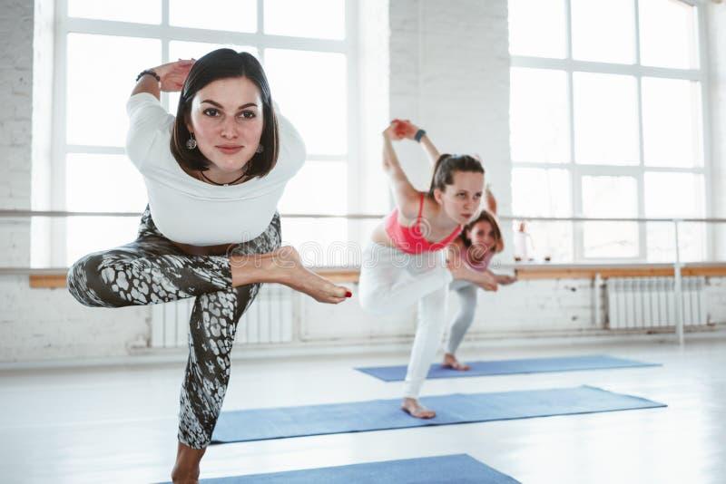 El grupo de yoga feliz joven de la práctica de la mujer plantea la clase interior entrenamiento del grupo imagen de archivo libre de regalías