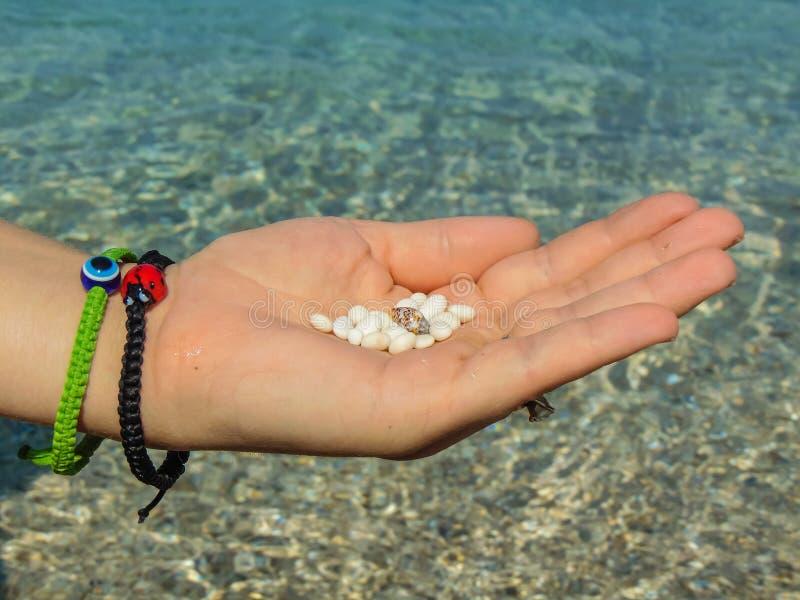 El guijarro blanco hermoso de las playas griegas foto de archivo