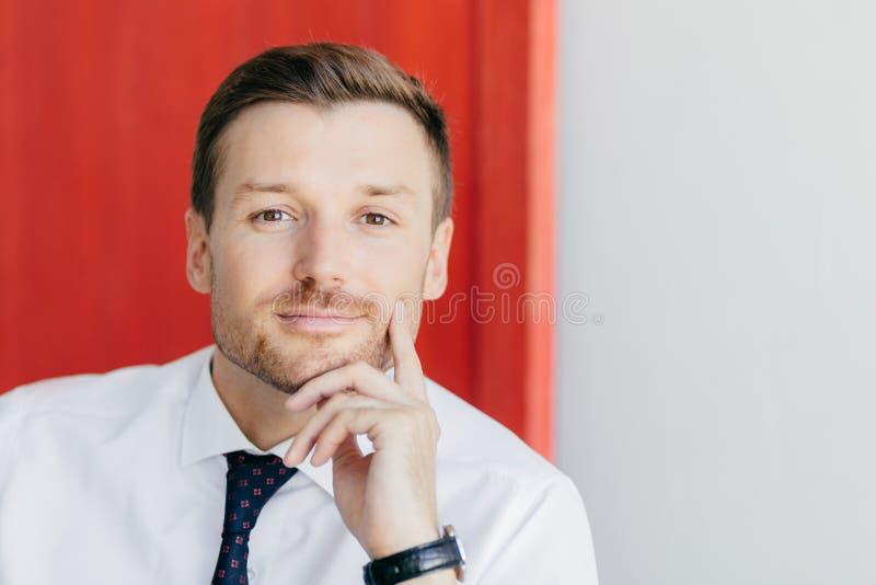 El Headshot del oficinista de sexo masculino joven sin afeitar serio sostiene la barbilla, mira directamente la cámara, vestida e imagen de archivo