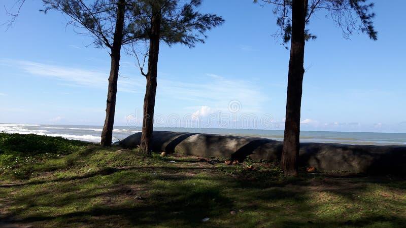 El ` hermoso s Bazzar de $cox del lugar de la necesidad considera la playa: imagen de archivo