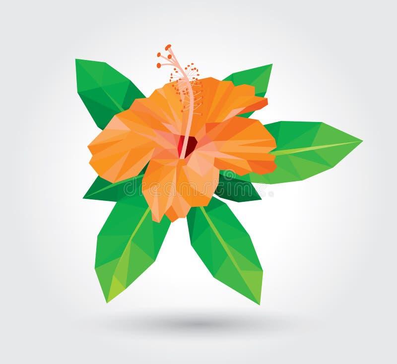 El hibisco anaranjado aisló la hoja fresca verde en diseño bajo del polígono del fondo blanco ilustración del vector