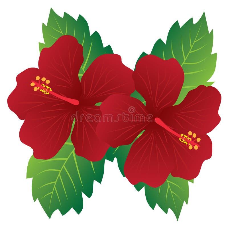 El hibisco rojo florece con el ejemplo del vector del color de las hojas stock de ilustración