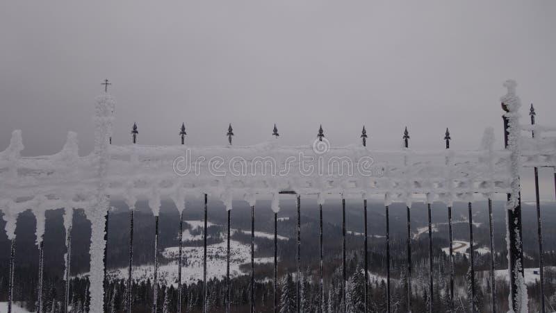 El hielo en la cerca El bosque de una altura detrás de él foto de archivo libre de regalías