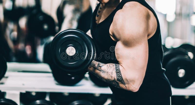 El hombre atlético del poder hermoso en ejercicio bombea para arriba los músculos, pesas de gimnasia foto de archivo