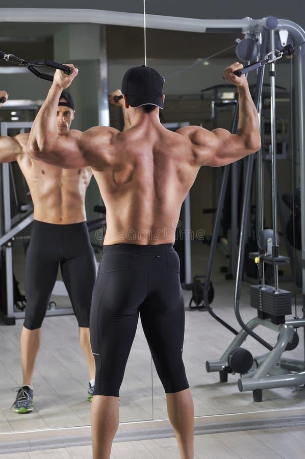 El hombre atlético potente hermoso que hace el bíceps ejercita con los cables imágenes de archivo libres de regalías