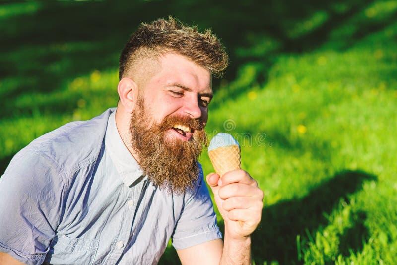 El hombre con la barba y el bigote en cara feliz come el helado, hierba en el fondo, defocused El hombre con la barba larga goza  foto de archivo libre de regalías