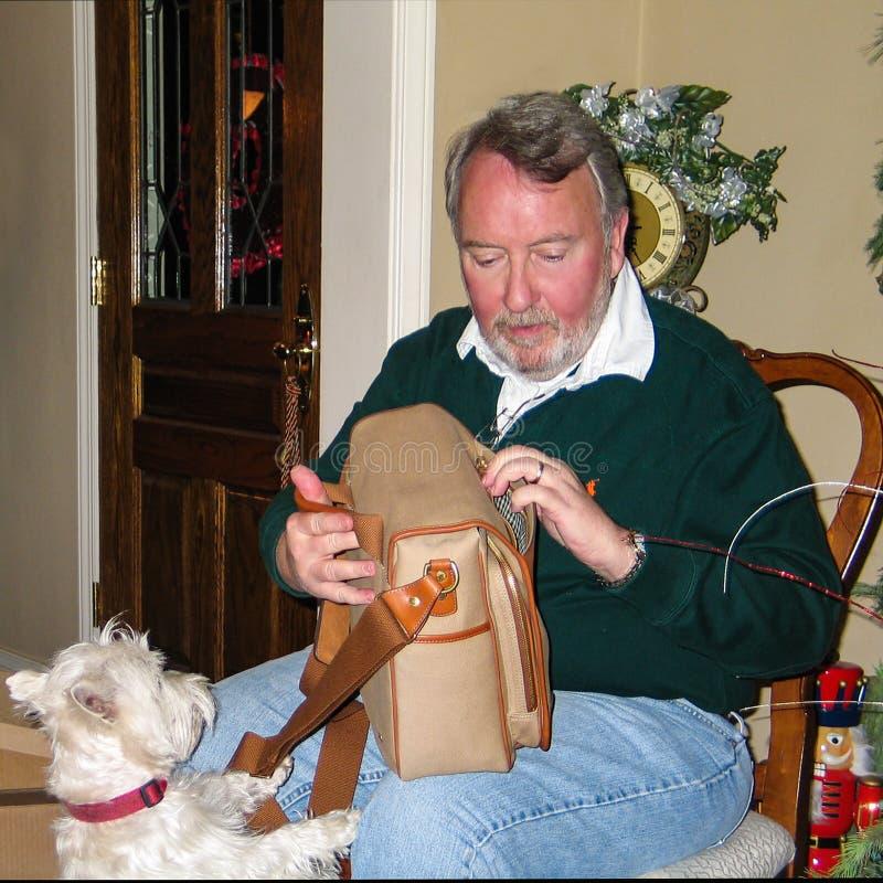 El hombre de ayuda del perro de Westie desempaqueta la cartera para la Navidad foto de archivo libre de regalías