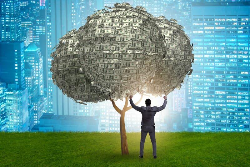 El hombre de negocios con el árbol del dinero en concepto del negocio imagen de archivo