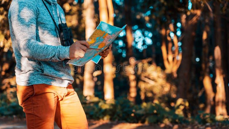 El hombre del viajero está en bosque con los prismáticos y ubicación de la búsqueda en los árboles grandes de los amongtrees del  imagen de archivo libre de regalías