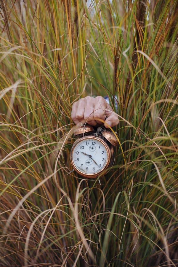 El hombre en la hierba de pampa sostiene el despertador viejo imagen de archivo