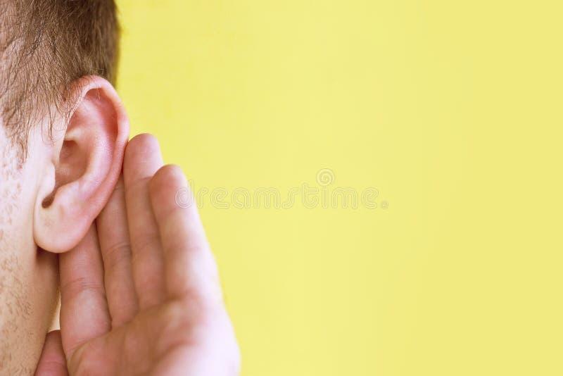 El hombre escucha atento con su palma su oído, cierre para arriba en el fondo amarillo, concepto de las noticias imagen de archivo libre de regalías