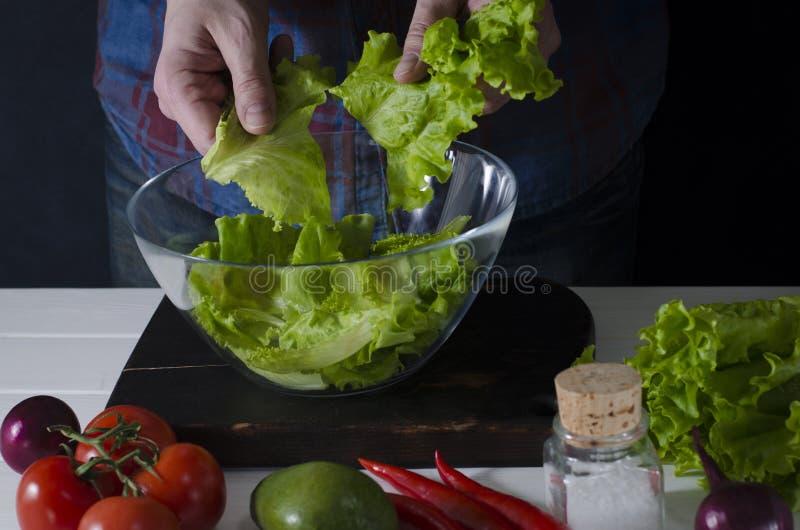 El hombre está preparando la ensalada verde de la lechuga romana Concepto sano del alimento fotos de archivo libres de regalías