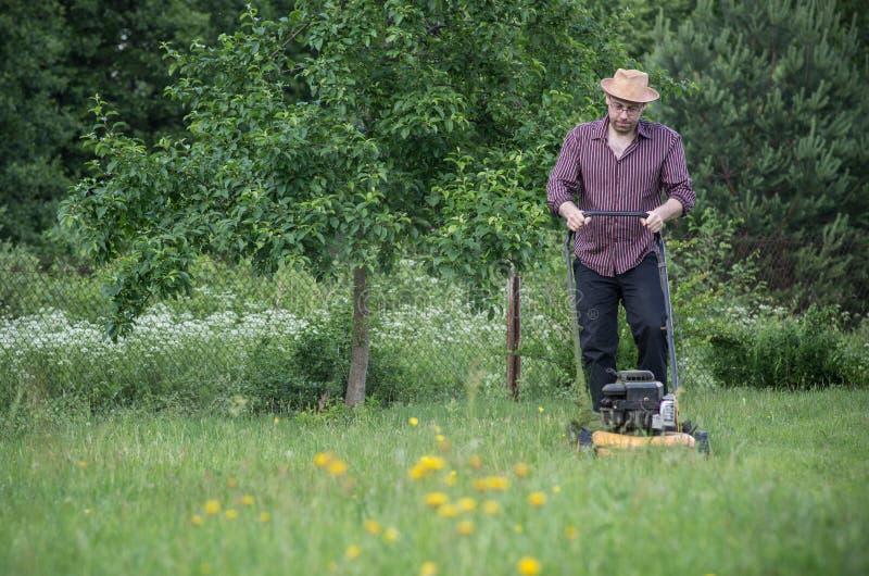 El hombre está segando el césped en verano imagen de archivo libre de regalías