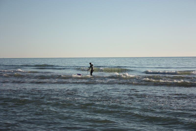 El hombre hundió en la pesca en mar y recoge tellines o las almejas u otros mariscos en un día de invierno imagen de archivo