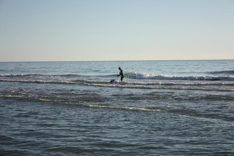 El hombre hundió en la pesca en mar y recoge tellines o las almejas u otros mariscos en un día de invierno fotos de archivo