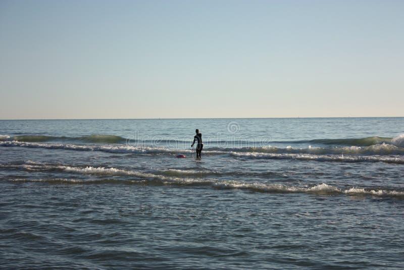 El hombre hundió en la pesca en mar y recoge tellines o las almejas u otros mariscos en un día de invierno foto de archivo