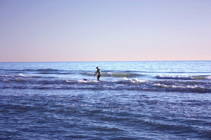 El hombre hundió en la pesca en mar y recoge tellines o las almejas u otros mariscos en un día de invierno imagen de archivo libre de regalías