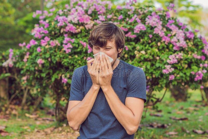 El hombre joven estornuda debido a una alergia al polen fotografía de archivo libre de regalías