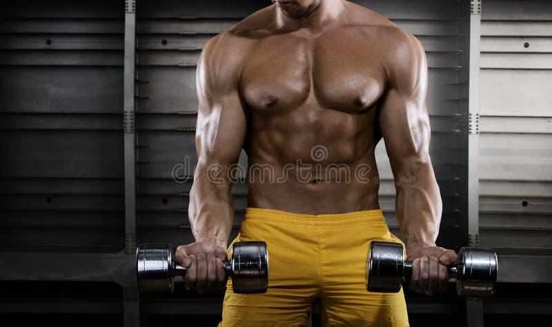 El hombre joven hermoso en los pantalones cortos, haciendo ejercita para el bíceps imagenes de archivo