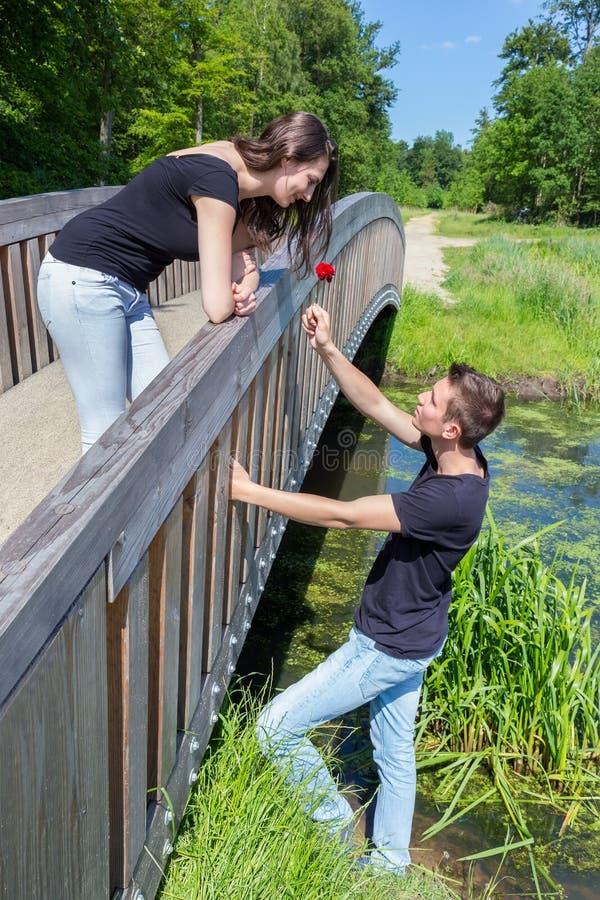 El hombre joven ofrece la rosa del rojo a la muchacha atractiva en el puente imágenes de archivo libres de regalías