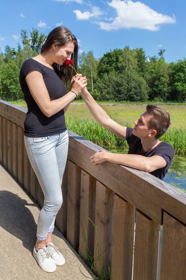 El hombre joven ofrece la rosa del rojo a la novia atractiva en el puente adentro fotografía de archivo libre de regalías