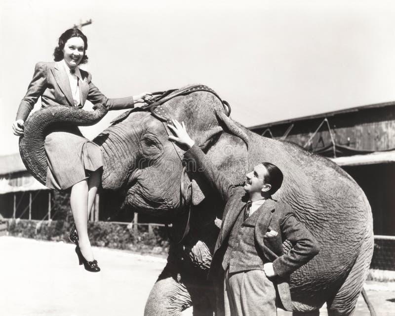 El hombre joven que miraba a la mujer levantó por el elefante fotografía de archivo libre de regalías