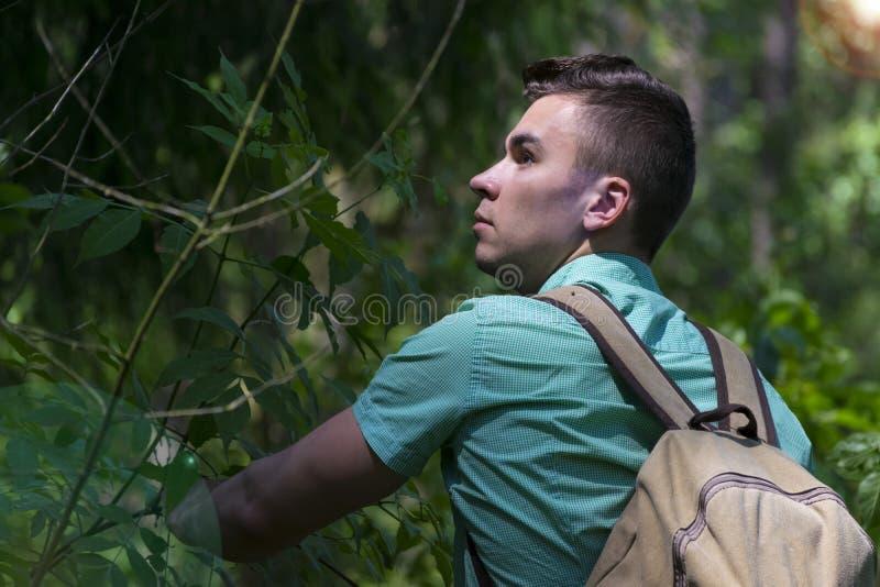 El hombre joven tira de la mano del ` s de la muchacha en la trayectoria de bosque foto de archivo libre de regalías