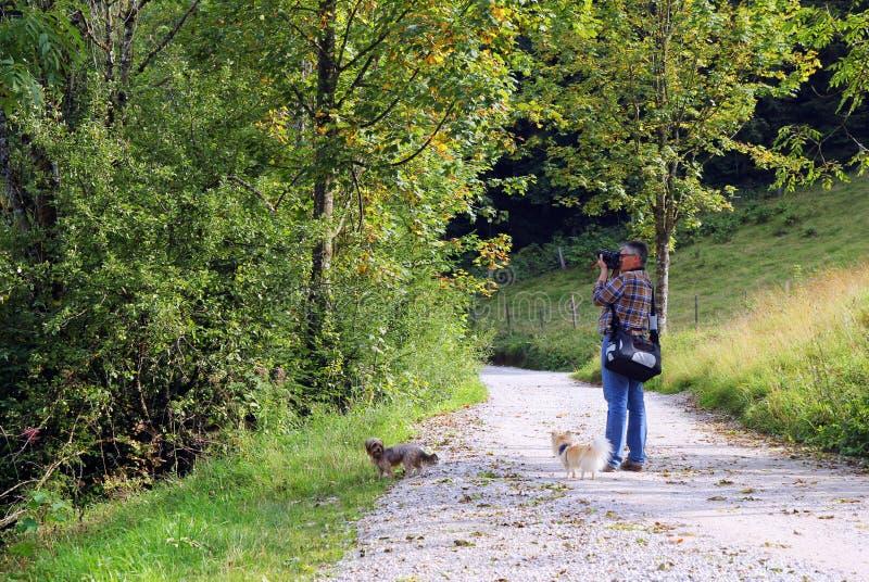 El hombre mayor es el tomar las fotos en el paseo con sus perros en un parque imágenes de archivo libres de regalías