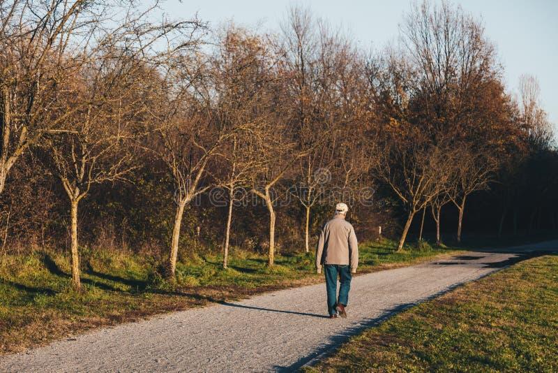 El hombre mayor solo que camina y que disfruta de un paseo en un otoño parquea a fotografía de archivo