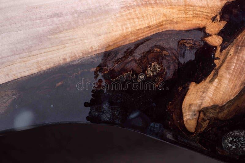 El hombre muestra a diferencia el árbol mojado y se seca resina negra con las piedras dentro fotos de archivo libres de regalías