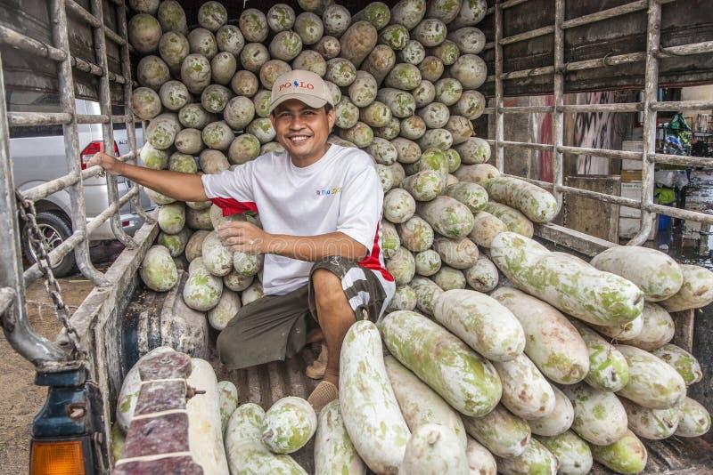 El hombre no identificado transporta cocumbers grandes en su coche foto de archivo libre de regalías