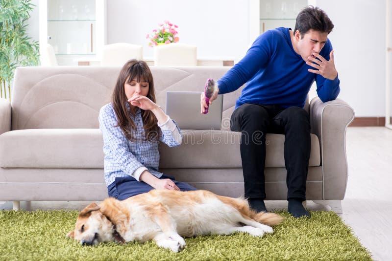 El hombre que tiene alergia de la piel del perro imágenes de archivo libres de regalías