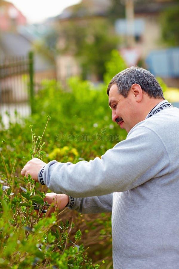 El hombre sonriente con la incapacidad que trabaja en primavera cultiva un huerto imágenes de archivo libres de regalías