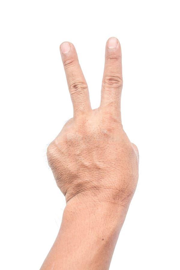 El hombre sostiene dos fingeres en un fondo blanco imágenes de archivo libres de regalías