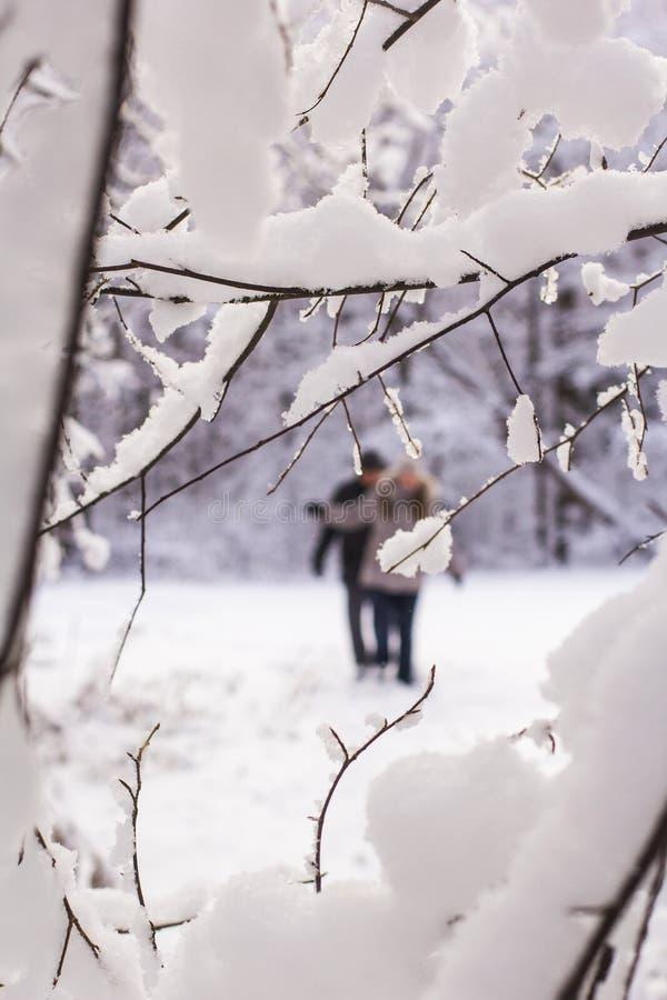 El hombre y la mujer de las personas del paisaje dos del fondo caminan a través del bosque nevoso en invierno imágenes de archivo libres de regalías