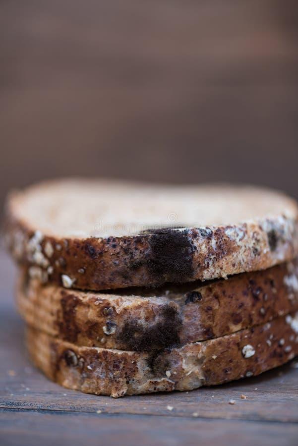 El hongo encendido expira pan imagen de archivo