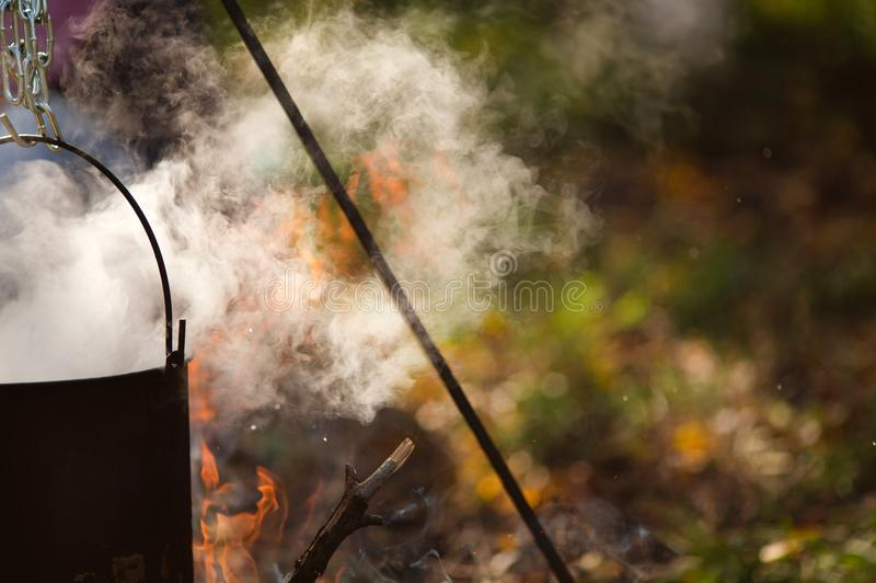 El hongo turístico fuma en la participación fotos de archivo libres de regalías